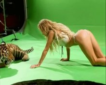 "Видео да фотоснимок Кристя Асмус на эротическом бельишко на передаче ""Проглянец"""