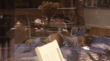 """Видео да фото верование Брежнева танцует на эротическом китайка во фильме """"8 лучших свиданий"""""""